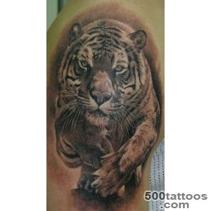 Animal Tattoo Images amp Designs_3