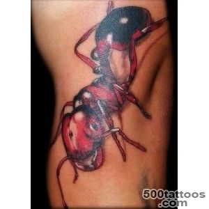 Ant tattoo design, idea, image
