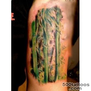 Great realistic colorful bamboo tattoo on arm   Tattoos photos_3
