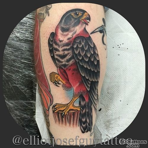 Elliotjosefguytattoo, Just made this falcon tattoo. Thanks..._5