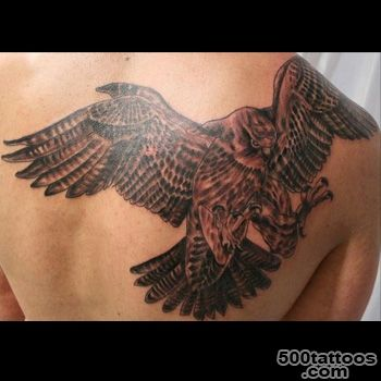Falcon Tattoo Meanings  iTattooDesigns.com_3