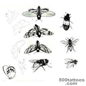 Insect Tattoos, Designs And Ideas  Page 16_3