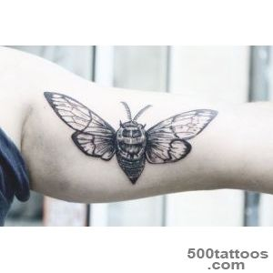 Insect Tattoos On Pinterest Insect Tattoo Cicada Tattoo And for _14