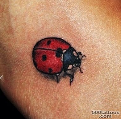 Ladybird tattoo #instagram  Ink.  Pinterest  Ladybird Tattoo ..._11