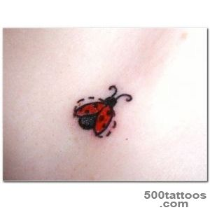 41+ Beautiful Ladybug Tattoos Ideas_7