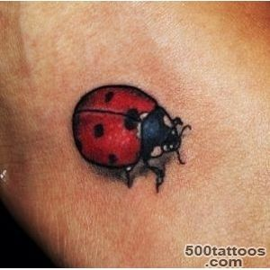 Ladybird tattoo #instagram  Ink  Pinterest  Ladybird Tattoo _11