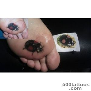 Ladybug Tattoos and Designs Page 33_48