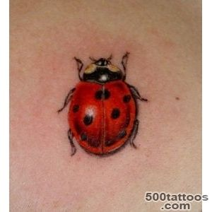 Ladybug tattoos photos   Tattoopm_14