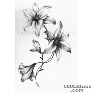 1000+ ideas about Lilies Tattoo on Pinterest  Calla Lily Tattoos _1