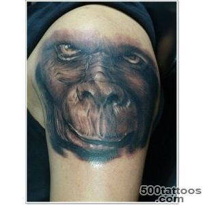 Awesome realistic monkey tattoo on shoulder   Tattooimagesbiz_40