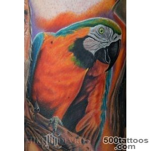 Mike DeVries  Tattoos  Nature Animal Bird  Parrot Tattoo_47