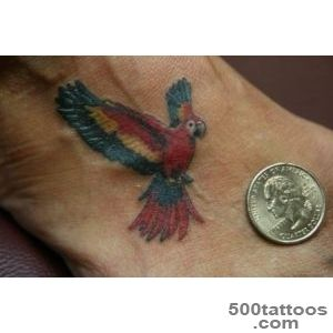 Pin Flying Parrot Tattoo On Right Shoulder on Pinterest_23