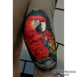 Pin Traditional Parrot Tattoo Cool Eyecatching Tatoos on Pinterest_39