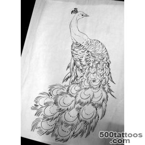 Peacock tattoo design, idea, image