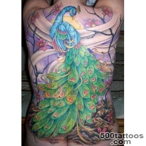 Inspiration and Ideas for Peacock Tattoos « Tattoo Pictures _48