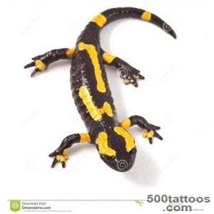 Pin Spotted Salamander Tattoo Pictures To Pin On Pinterest on _43