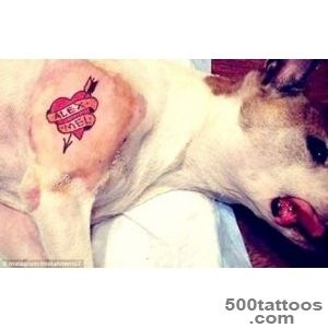 Brooklyn tattoo artist who inked dog criticized by animal rights _11
