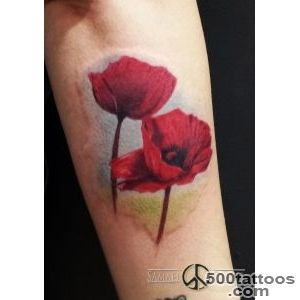 Tattoo on Pinterest  Poppies Tattoo, Poppies and Remembrance Poppy_8